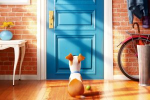 The Secret Life Of Pets Movie